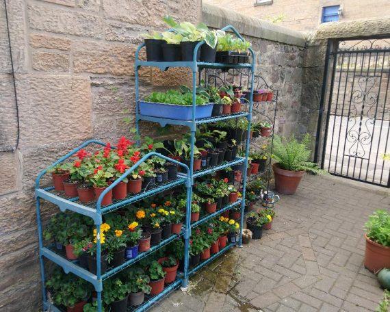 Garden plans for sale
